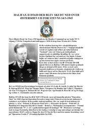 denne historie om flyet og dets besætning - Allierede flyvere 1939 ...