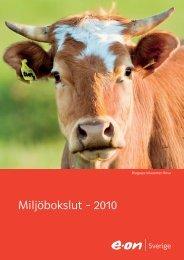 Miljöbokslut – 2010 - E-on
