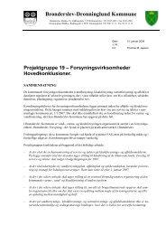 Notat af 10. januar 2006 fra projektgruppe 19 - Brønderslev Kommune