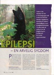 Epilepsi - Dansk Berner Sennen Klub