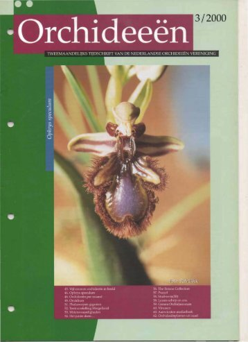 2000 - 3 - Orchideeën Vereniging Vlaanderen