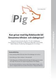 Läs hela rapporten - Svenska Pig