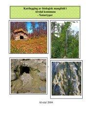 Kartlegging av biologisk mangfold i Alvdal kommune - Naturtyper