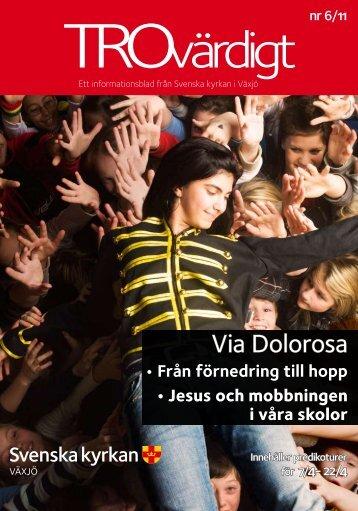 Trovärdigt nr 6/2011 - Svenska kyrkan i Växjö
