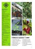 Odlaren nummer1-2007 - Page 3