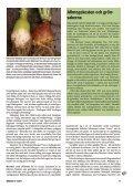 Svenska grönsaker förr i tiden - Fobo - Page 2