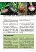 Svenska grönsaker förr i tiden - Fobo - Page 3