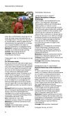 Naturen på toppen 2012 - Naturstyrelsen - Page 6