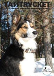 En tidning för oss inom Täby Hundsällskap. Nr 1/2013