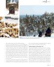 Living's - Scandinavian Wintersports - Page 5