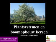 Plantsystemen en boomopbouw kersen - DLV Plant