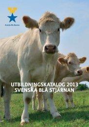 UTBILDNINGSKATALOG 2013 SVENSKA BLå STJÄRNAN