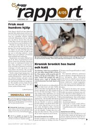 Kronisk bronkit hos hund och katt Frisk med ... - Doggy Rapport