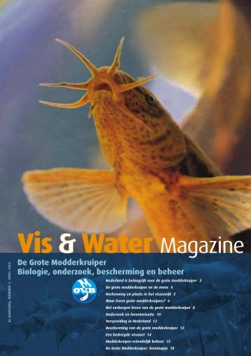 De Grote Modderkruiper Biologie, onderzoek, bescherming en beheer