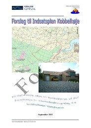 Forslag til Indsatsplan Kobbelhøje - Struer kommune