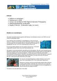 Nieuwsbrief #2, februari 2008 Inhoud • Duikers en ... - Island Diving