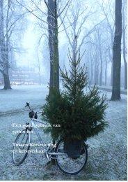 4 december 2008 - Hipgo