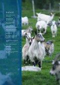 Brosjyre smittevern.pdf - Helsetjenesten for geit - Tine - Page 2