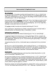 Forårsopfølgning 2009 - bemærkninger