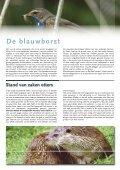 maart - De Alde Feanen - Page 6