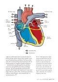 Plötsligt hjärtstopp - Hjärt-Lungfonden - Page 5