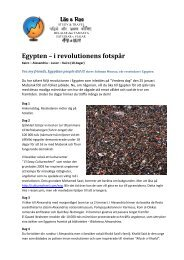 Egypten – i revolutionens fotspår - Läs & Res