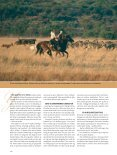 Reise: Safari i Sør-Afrika Skal du først legge ut på safari i Sør-Afrika ... - Page 3