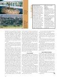 Reise: Safari i Sør-Afrika Skal du først legge ut på safari i Sør-Afrika ... - Page 5
