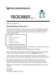 20130114 :: Veckobrev vecka 3 & 4 - Wallbergsskolan