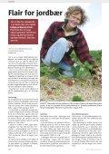 På udkig efter skadedyr i solbær - Gartneribladene - Page 6