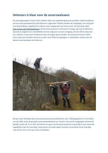 Werkochtend op de Oelemars, 9 maart 2013 - Vogelwerkgroep Losser