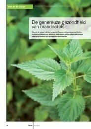 De genereuze gezondheid van brandnetels - Eetbare Wilde Planten