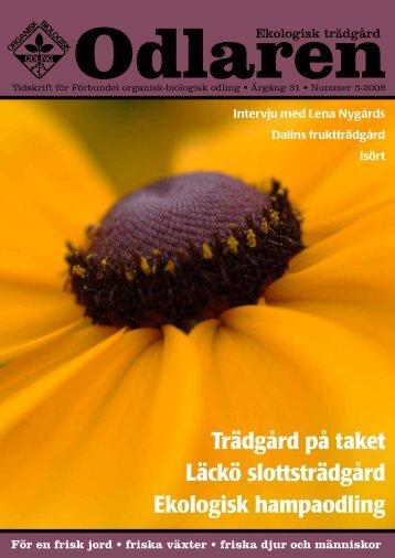 Trädgård på taket Läckö slottsträdgård Ekologisk ... - Monarda
