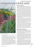 Trädgård på taket Läckö slottsträdgård Ekologisk ... - Monarda - Page 5