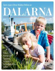 Året runt i den södra delen av Dalarna (15 Mb pdf) - Skribent Ewa ...