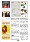 Bijenzaken aan ons hoofd - Phytofar - Page 4