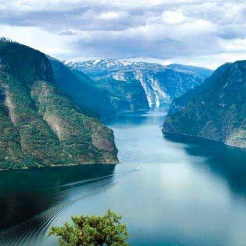 Last ned vår brosjyre - Sognefjord Gourmet