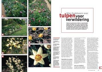 T&L Wim Oudshoorn over tulpen voor verwildering 21 ... - De Warande