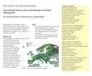 LWO- Toftlund - evt. 4 sider - gisgeo