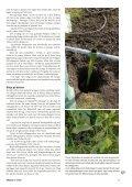 Jordisering (pdf) - Fobo - Page 2