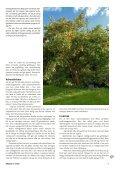 Jordisering (pdf) - Fobo - Page 4