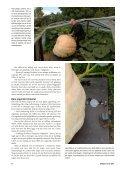 Jordisering (pdf) - Fobo - Page 5