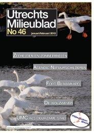 No 46 januari/februari 2013 (klik voor download) - Milieucentrum ...