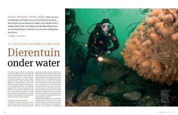 Dierentuin onder water, Fly, drive & dive aan de ... - Udo van Dongen