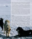 Fra et nordgrønlandsk udsted under Første Verdenskrig - Siden Saxo - Page 5