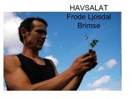 HAVSALAT fra Frode Ljosdal - BluePlanet AS