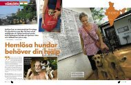 Animal rescue i Goa – del 1 - Yogavita
