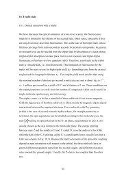 10. triplet state - Molecular Physics, Leiden