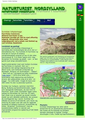Naturturist - Svinkløv klitplantage