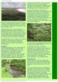 Naturturist - Svinkløv klitplantage - Page 2